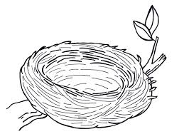 Coloring Pages Nest Coloring Page Bald Eagle Pages Mandala In Nes