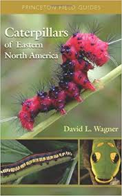 Amazon Com Caterpillars Of Eastern North America A Guide