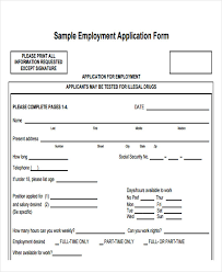 Sample Generic Application For Employment Gorgeous 48 Job Application Form Templates Free Premium Templates