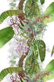 timorous beasties fabric topical tropical timorous beasties crazy beautiful things here