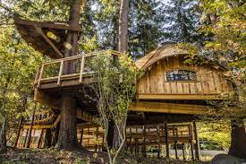 Materials On Craigslist Used To Build Treehouse  Business InsiderTreehouse For Free