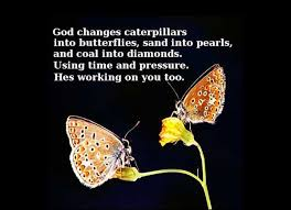 Butterfly Beauty Quotes Best of Butterfly Quotes God Changes Caterpillars Into Butterflies Sand