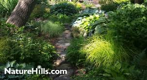 pre planned shade garden recipes for