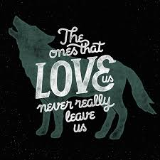 Love Quotes From Harry Potter Adorable The Ones That Love Never Really Leave Us On We Heart It
