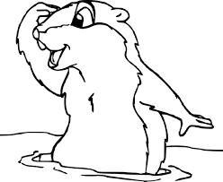 Coloriage Marmotte Imprimer