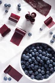 easy blueberry fruit leather