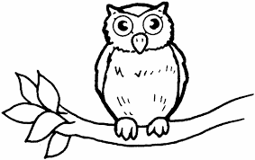 Small Picture Owl Coloring Page owl colouring pages Children Coloring