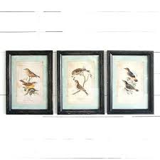 framed wall art woodland bird framed wall art set of 3 framed wall art australia