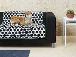 pets furniture. our pets mean well when they jump on furniture so can spend some time