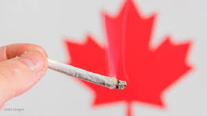 essay on why weed should be legal term paper help essay on why weed should be legal against legalizing marijuana when smoking marijuana