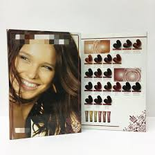 Hot Item Synthetic Hair Swatch Color Chart With Color Wheel