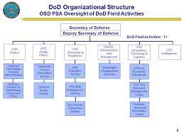 Organization Chart Activity Term Paper Example Nressaysrrw