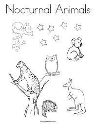 nocturnal animals coloring pages.  Coloring Nocturnal Animals Coloring Page To Pages O