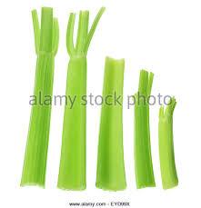 Image result for celery stalk ends