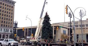 Winnipeg city hall to go without Christmas tree thanks to storm cleanup
