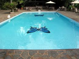 fiberglass pool design inspiration and with erfly deep flooring and rock paving