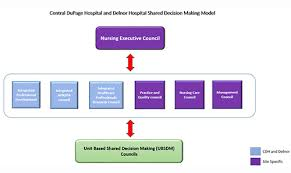 Central Dupage Hospital Shared Leadership And Decision