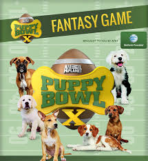 puppy bowl x halftime show. Fine Puppy Puppy Bowl Is An Annual TV Program On Animal Planet That Uses A Cute Lineup  Of Puppies To Mimic NFL Super Game This Year Booked Special  On X Halftime Show L