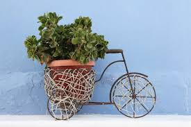 bicycle flower planters for the garden