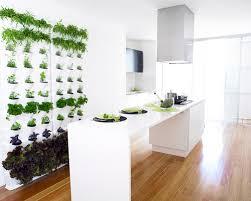 indoor vertical garden. Kitchen Vertical Garden Indoor A