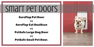 a doggy door or cat door is great in theory but if you return home and face another person s cat in your kitchen