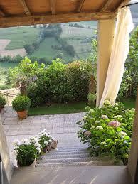 Aiuole da giardino fiorite: siepi: come adornare il giardino con