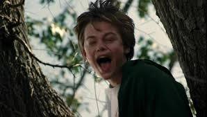 leonardo dicaprio what s eating gilbert grape. Unique Leonardo Leonardo DiCaprio Hintergrund With A Sitka Spruce An American White Birch  And Mahogany Intended Dicaprio What S Eating Gilbert Grape
