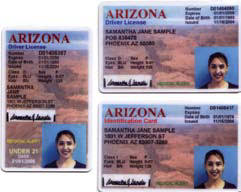License Arizona Driver Driver Arizona Manual