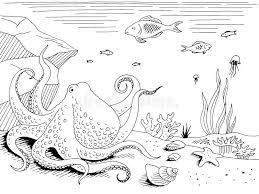 Anemone Di Mare Schizzo Di Vettore Illustrazione Vettoriale