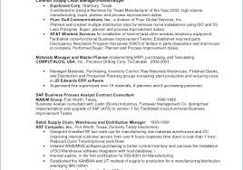 Free Sap Security Consultant Resume Samples Free Template Design