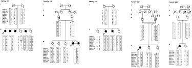 Pedigree Charts Of The 14 Autosomal Recessive Juvenile