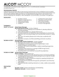 Best Sales Director Cv Example Marketing Resume Template Fungra Rs