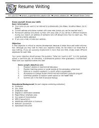 Great Objectives For Resume Server Objective Resume 64