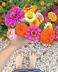 lara casey garden