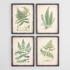 >fern wall art set of 4 world market fern wall art set of 4