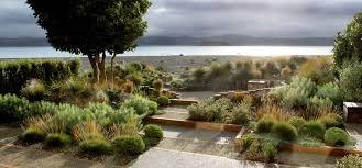 Small Picture modern landscape architecture SHRUB fences plantation plan