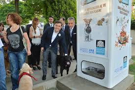 Dog Vending Machine Stunning In Istanbul Stray Dogs Get Their Food From Vending Machines
