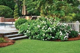 Small Picture Low maintenance landscaping tips Atlanta Home Improvement