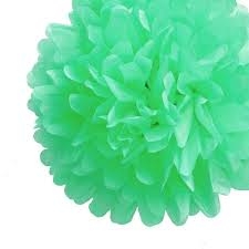 Tissue Paper Pom Poms Flower Balls Ez Fluff 16 Inch Cool Mint Green Tissue Paper Pom Poms Flowers Balls Hanging Decorations 4 Pack Fluffy Wall Backdrop Decorations On Sale Now Pom