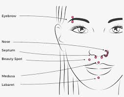 35 Hand Picked Guides Piercing Chart