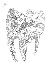 Small Picture Tooth Coloring Pages Best Coloring Pages adresebitkiselcom