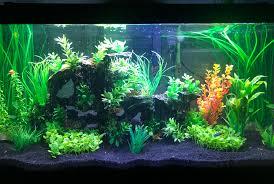 Marineland Aquatic Plant Led Lighting System Review Best Aquarium Hood Reviews Led Light Hood For Aquarium 2019