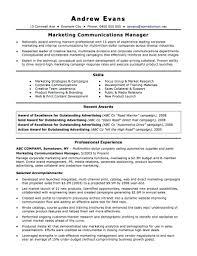 Comfortable Resume Template Nz Photos Professional Resume