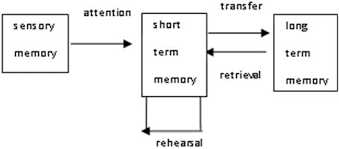 Long Term Memory Chart Cognitive Analysis Of Long Term Memory In Interpreting