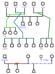 pedigree tree rules to build genograms genopro