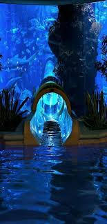 underwater water slide.  Slide Underwater Water Slide This Is AMAZING And Water Slide R
