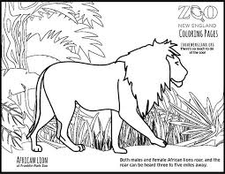 Small Picture Zoo New England Color a Lion