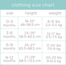 12 Month Size Chart Inspiration Clothing Collection