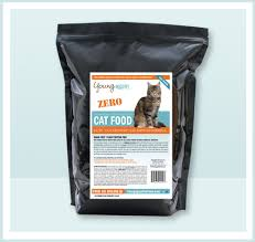 Best Grain Free And Low Carb Dry Food Brands For Cats