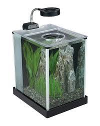 office desk fish tank. Office Fish Tank. Amazon.com : Fluval Spec Desktop Glass Aquarium, 2- Desk Tank S